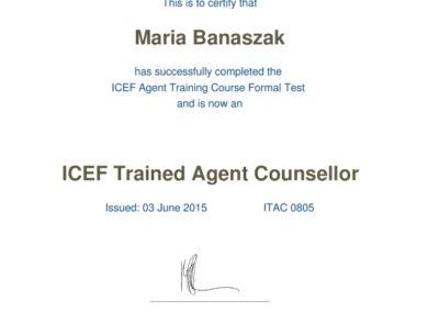 Certyfikat ICEF www